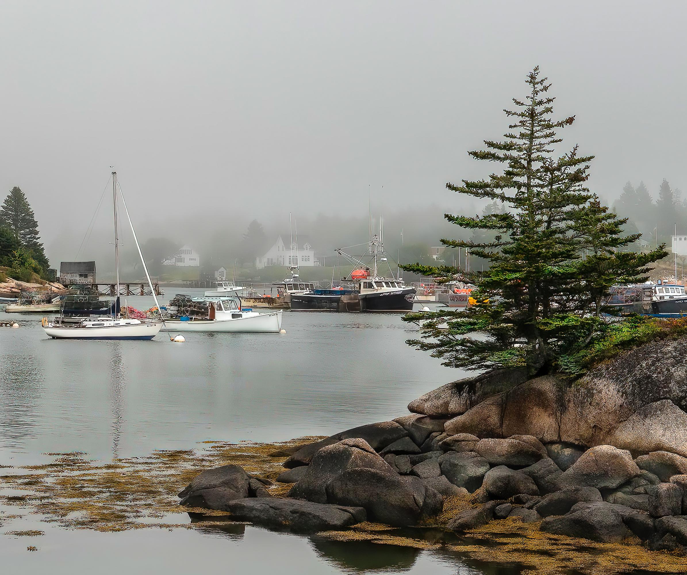 Sorrento-Harbor-on-a-Foggy-Day