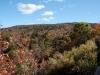 Fall foliage without a circular polarizer