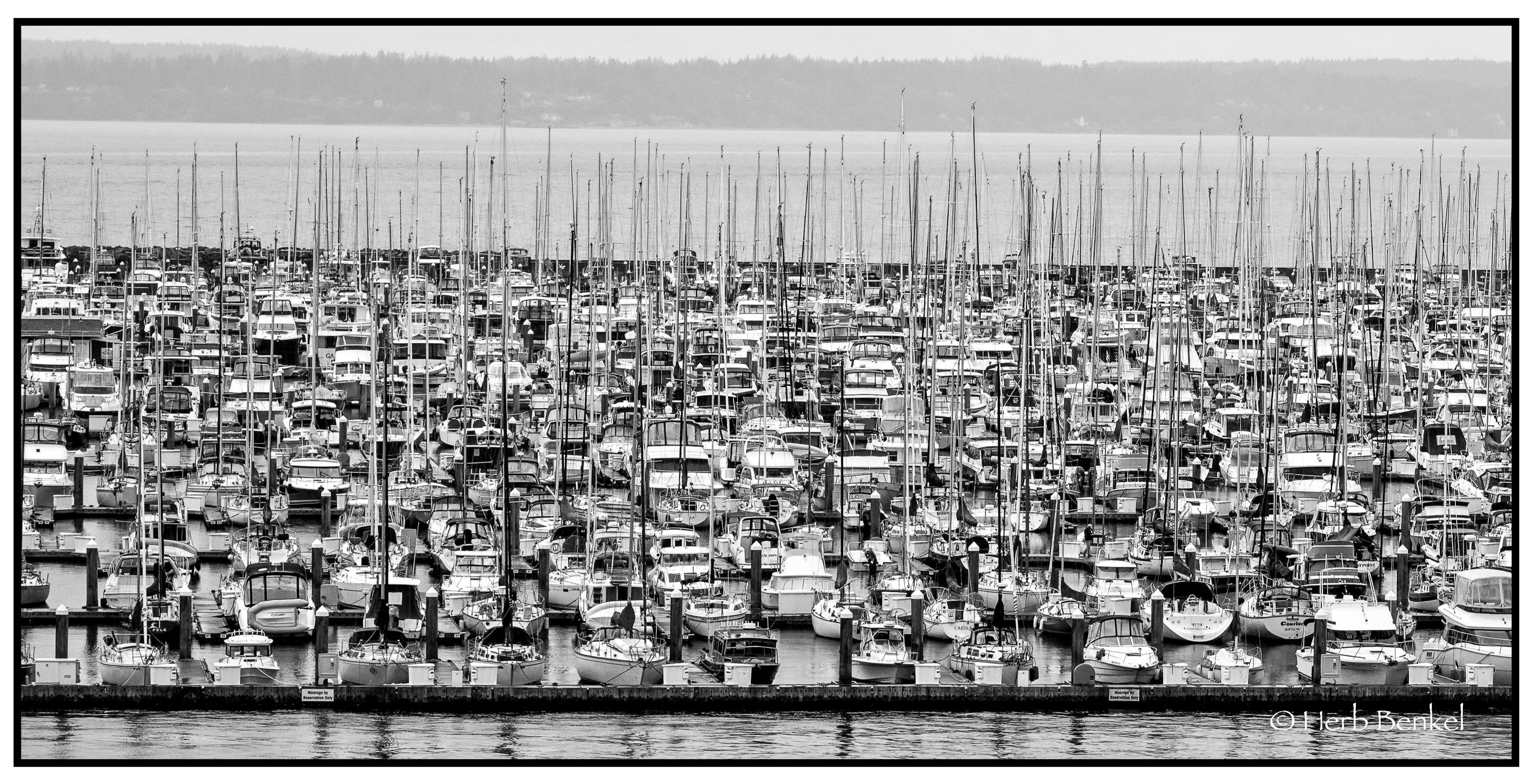 Marina, Seattle 2018 Watermarked