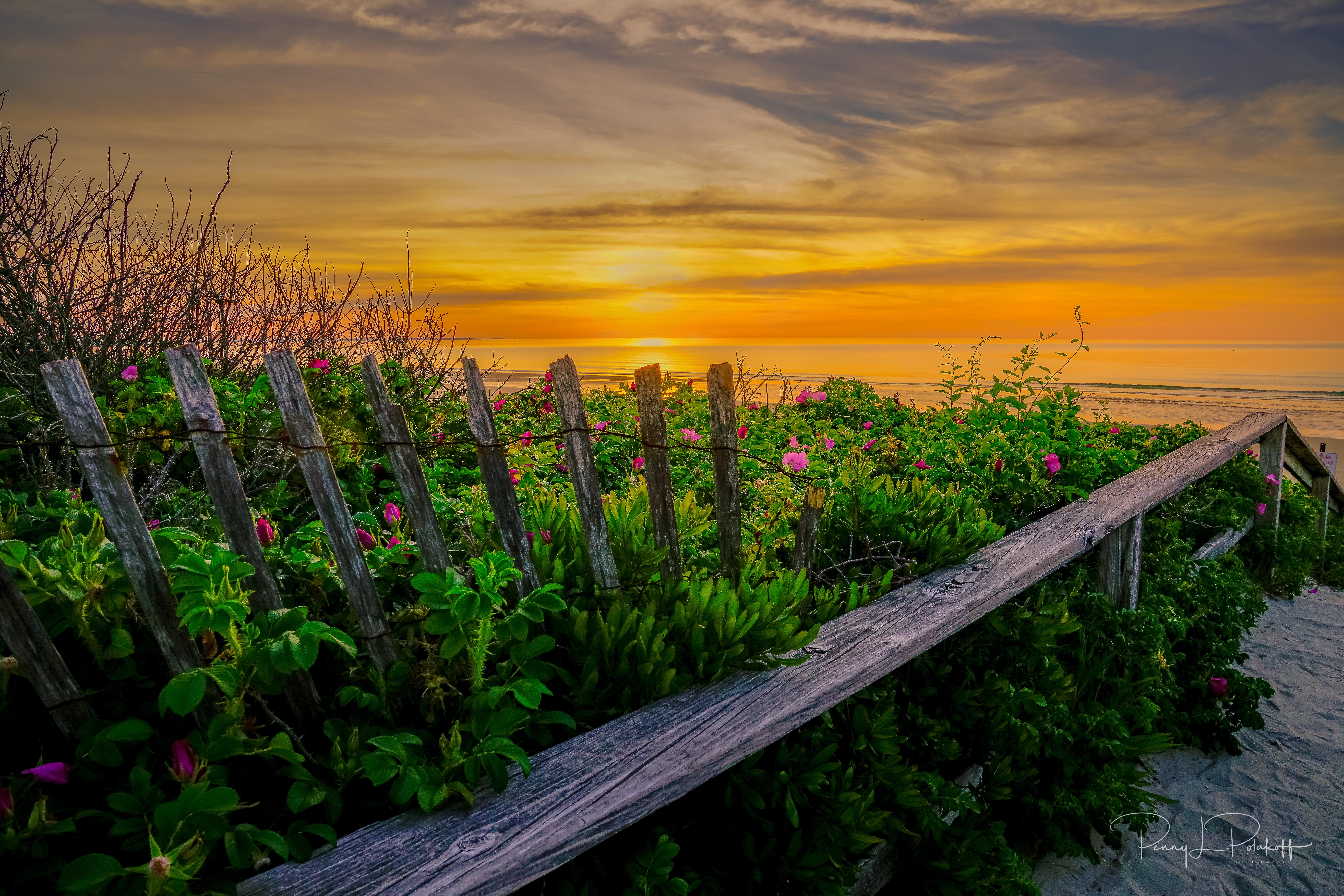 Footbridge-Beach-Best