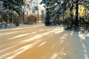 Winters Majesty