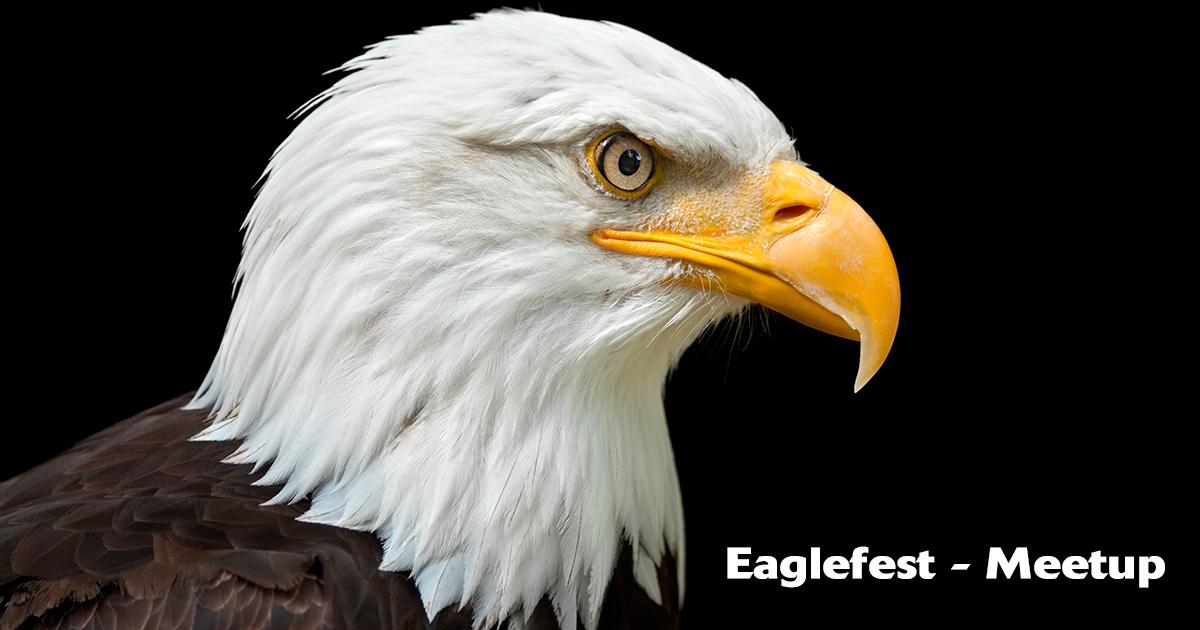 eagle-fest-bcc